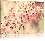 Kirschblüten Format: 120x80 cm auf Leinwand, XXL riesige Bilder fertig gerahmt mit Keilrahmen, Kunstdruck auf Wandbild mit Rahmen, günstiger als Gemälde oder Ölbild, kein Poster oder Plakat