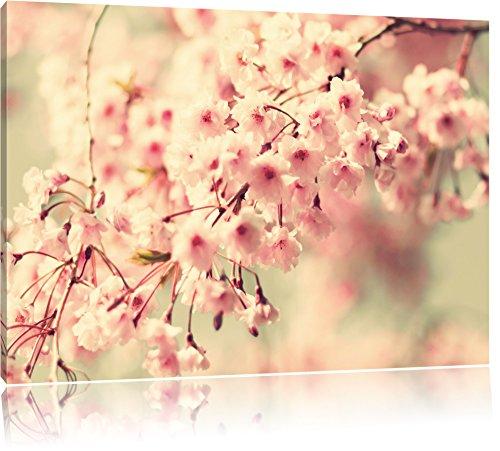 I fiori di ciliegio, pittura su tela, Immagini XXL completamente incorniciati con grandi cornici di cuneo, foto muro Stampa artistica con cornice, più economico di pittura o di un dipinto a olio, non un manifesto o un cartello, Leinwand Format:120x80