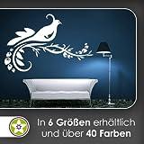 Vogel Ranke Blüte Wandtattoo in 6 Größen - Wandaufkleber Wall Sticker