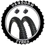 Vandorm 66x 5,8cm DH Mountain Bike MTB Reifen & Presta Röhren (Paar)