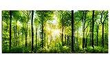 Glasbilder Wandbild AG312502120 Morgensonne Scheint durch Bäume 125 x 50cm/Deco Glass, Design & Handmade/Eyecatcher, Kunstdruck!