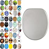 Soft Close Toilet Seat | Stable Hinges | Easy to mount | Many Different Designs (Glittering Silver)