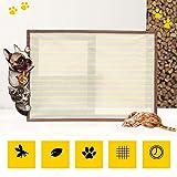 BAIXL Petsafe Window & Portico Screen Pet Door, Piccolo, Pet...