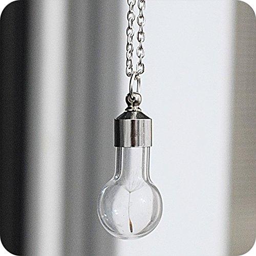 pusteblume-halskette-glas-orb-terrarium-jewelry-saatgut-halskette-pusteblume-lowenzahn-globe-ring