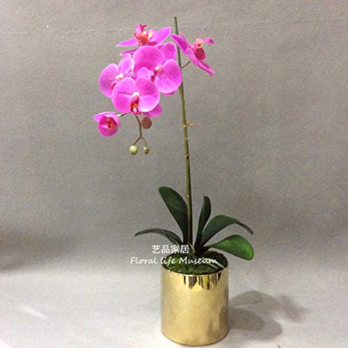 Tackebu orchidea artificiale fiori finti phalaenopsis composizione floreale ristorante scrivania rosso 60 × 20cm
