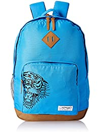 Amazon.in  Ed Hardy - Bags   Backpacks  Bags e841aaef9a1f1