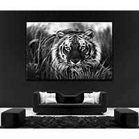 Tiger Waiting To Pounce di animali selvatici 101,60 (40