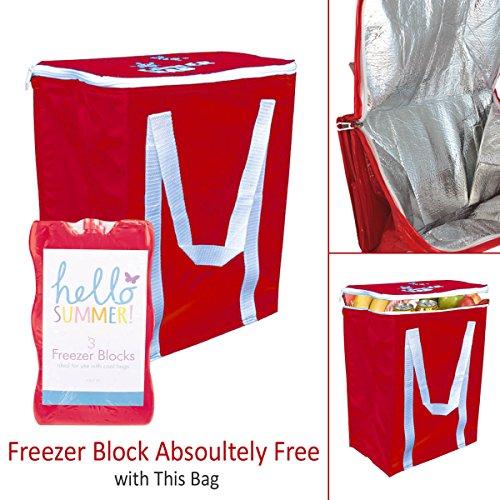 Sac isotherme – Surface facile à nettoyer –-Lot de 3 bloc congélateur gratuit avec chaque Sac rouge Rouge 1 pièce