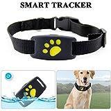 Localizzatore GPS cani e gatti, impermeabile, per cani gatti anti-perso, Allarme, in tempo reale, recinzione di sicurezza, compatibile con iOS/Android Phone