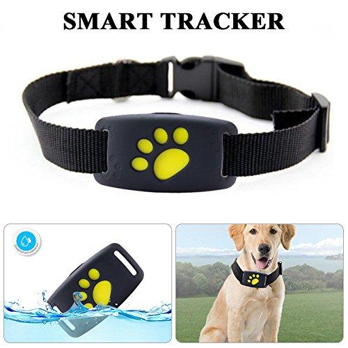 LifeUp Localizador GPS para Perros Perros y Gatos, Localizador Anti-Perdida Anti-Robo de...