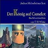 Der König auf Camelot - Teil 1 Das Schwert im Stein