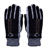 WITERY Men's Winter Leather Gloves - Thick Warm Fleece Windproof Gloves Cold Proof Thermal Mittens - Ideal for Dress Driving Cycling Motorcycle Camping etc Black