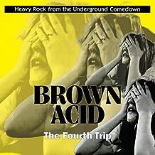 Brown Acid: the Fourth Trip [Vinyl LP]