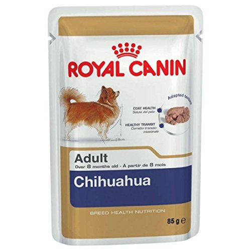 royal-canin-breed-health-nutrition-chihuahua-adult-12-x-85g