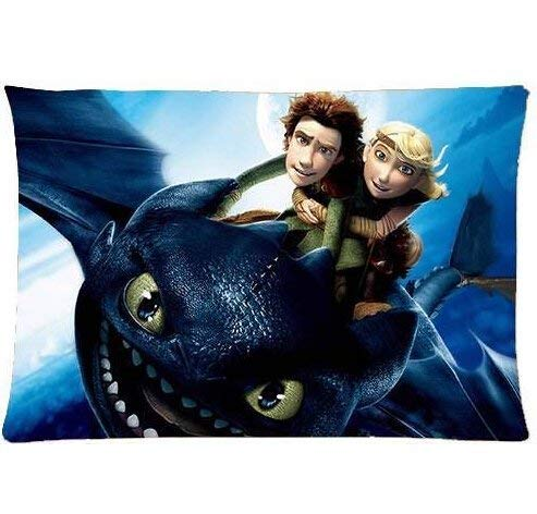 5075PI Custom How to Train Your Dragon Home Decorative Soft Throw Pillowcase Cushion Custom Pillow Case Cover Protecter with Zipper Printed (40cmx60cm) -