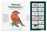Wawra´s Naturtafeln Set 1 mit 12 Lerntafeln im A3-Format zum Entdecken, Beobachten, Bestimmen - 41,6 x 27 cm