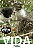 Vida [completo] (Portuguese Edition)