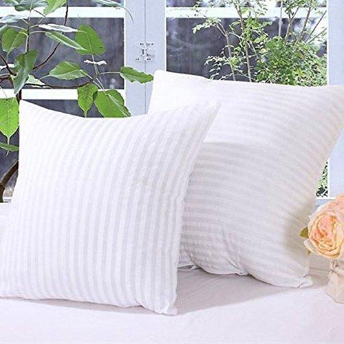 Bluelover 2 formato zebrato vuoto compressione cuscino Core piazza cuscino cuscino interno inserto divano Decor -45 * 45 cm