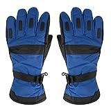 West See Herren Damen Handschuhe Fahrradhandschuhe Wasserdichte Skihandschuhe Sporthandschuhe Snowboard