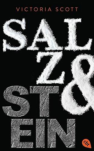 Salz & Stein (Die Feuer & Flut-Romane, Band 2)