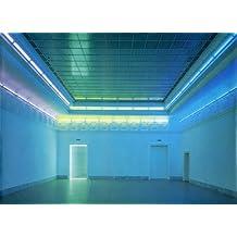 Neue Anwendungen fluoreszierenden Lichts. Mit Diagrammen, Zeichnungen und Drucken von Dan Flavin