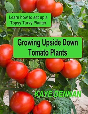 Growing Upside Down Tomato Plants: Learn How to Set Up