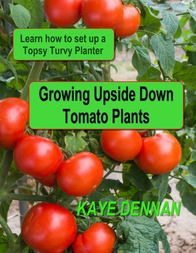 growing-upside-down-tomato-plants-learn-how-to-set-up-a-topsy-turvy-planter-vegetable-gardening