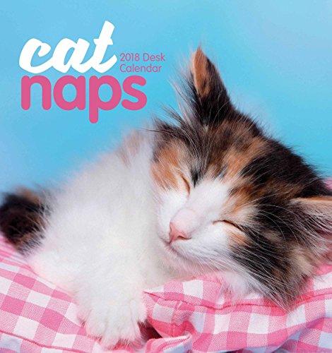 Cat Naps 2018 Easel - Desktop-kalender-easel