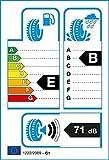 Milestone Greensport 205/55 R16 91V Sommerreifen
