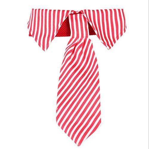 Fully Einstellbar Hunde Fliege Krawatte Halsschmuck Halsband Hundefliege Katzen (Rot)