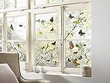 Komar - Window-Sticker CHEERFUL - 31 x 31cm - Fensterdeko, Fenstersticker,...
