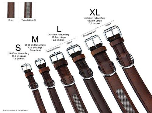 Hundehalsband aus Leder (XL – 46-55cm, Braun) - 6
