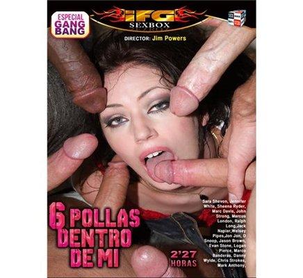 6 POLLAS DENTRO DE MI DVD PORNO
