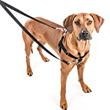 Freedom no pull harness with leash training kit by...