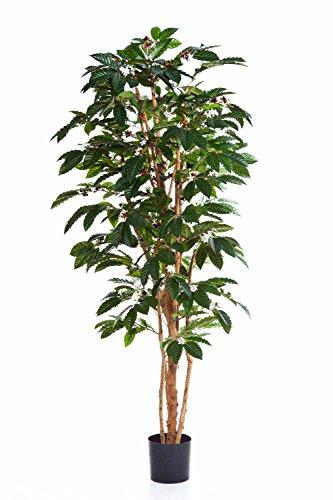 artplants – Künstlicher Kaffeebaum Moka, 675 Blätter, grün, 210 cm – Deko Baum/Kunstbaum
