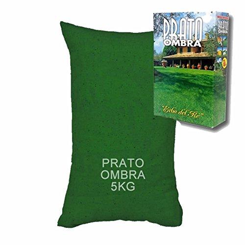 Galleria fotografica Sementi Prato Ombreggiato BESTPRATO OMBRA - SACCO 5KG x 200MQ