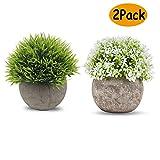 Catrne Piante Artificiali Falso Artificiali, Mini Fiori di plastica Piante Verdi Decorative con vasi Grigi per Esterno Giardino di casa Cucina Interna