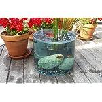 garden water feature - pop up pond aquarium pond kit Garden Water Feature – Pop Up Pond Aquarium Pond Kit 51OT5YQeh5L