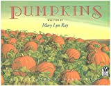 Pumpkins: A Story for a Field (Voyager Books)