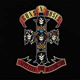 Appetite For Destruction [Vinyl LP]