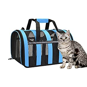 Petdiary Cage Box de Transport pour Chien Chat - Sac de Transport d'animaux petit Sac à Main de Transport Respirable