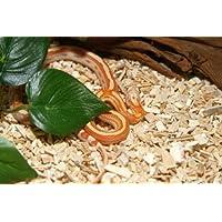 "M&S Reptile-Wood ""Snake"", 25 Liter"