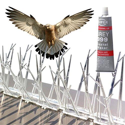 Parkland® kit de pointes à oiseaux en polycarbonate de 10 Pieds avec tube de colle en silicone transparent.
