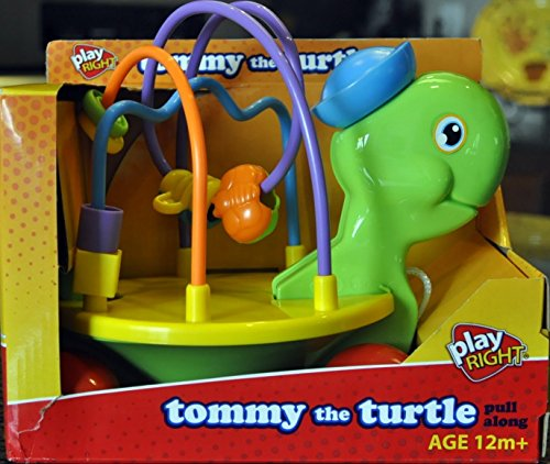 tommy-the-turtle-by-play-right-by-walgreen-co