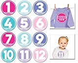 Sticky Bellies Baby Month Stickers- Mode...