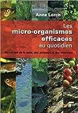 Les micro-organismes efficaces au quotidien - Au service de la terre, des animaux et des hommes