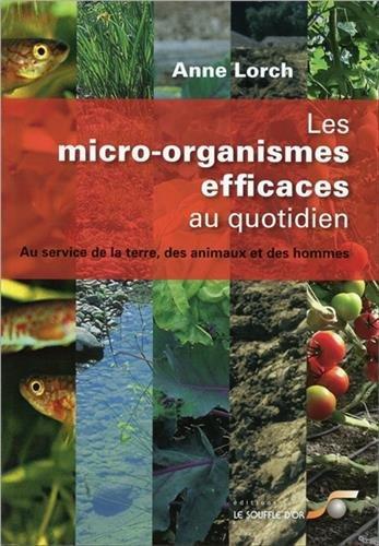 Les micro-organismes efficaces au quotidien