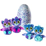 Hatchimals Surprise - Peacat - Hatching Egg with Surprise Twin Interactive Hatchimal Creatures by Spin Master