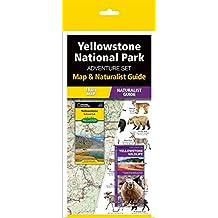 Yellowstone National Park Adventure Set