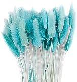 Soulitem Secchi Bouquet di Fiori Artificiale Lagurus Ovatus Decorazione per Casa Albergo Matrimonio Decorazione - Azzurro Cielo